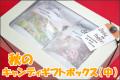 【コスモスと紅白うさぎ各30個入り】秋のキャンディギフトボックス(中)