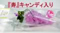 【結婚式 プチギフト】【サンキューカードなし】【『寿』キャンディ入り】recolte -れこると-