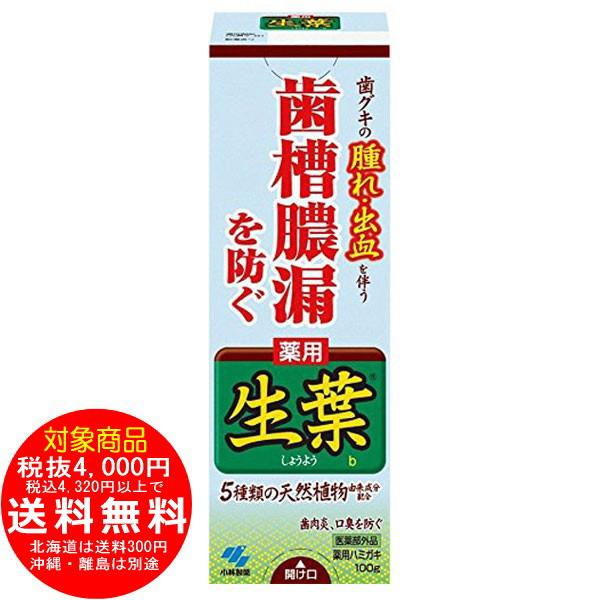 小林製薬 生葉 (しょうよう)b 100g 生葉 歯周病歯磨き 薬用ハミガキ [f]