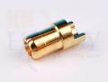 6mmゴールドコネクター(オス) 2