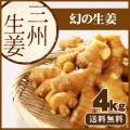 【送料無料】高知県産 三州生姜(さんしゅうしょうが) 4kg   /食用生姜/種生姜ではございません