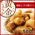 高知県産 黄金生姜(こがねしょうが) 500 g