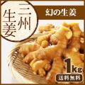 【送料無料】高知県産 三州生姜(さんしゅうしょうが) 1kg   /食用生姜/種生姜ではございません