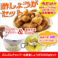 ぶんぶんチョッパー&黄金生姜500gセット