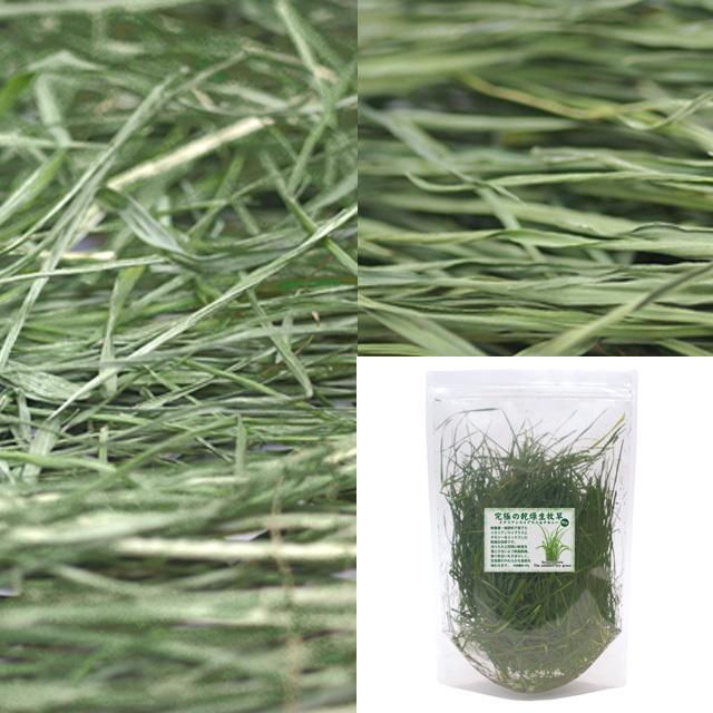 【無料プレゼント】究極の乾燥生牧草 ミックス お試し品