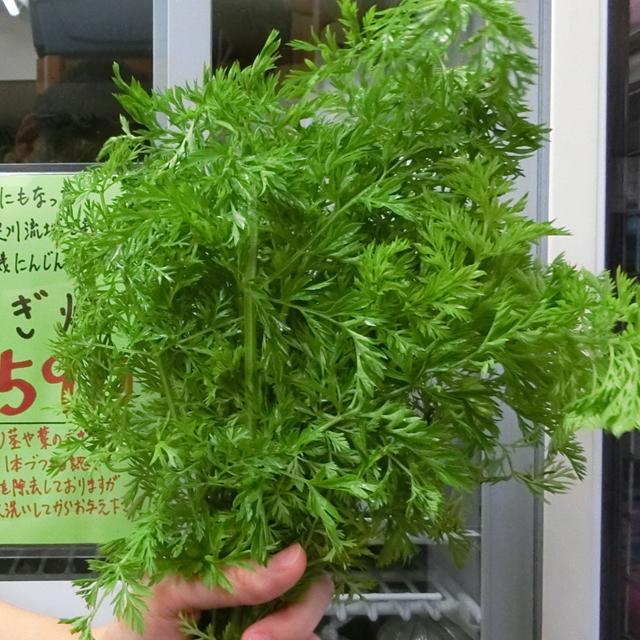 【店舗販売】無農薬 有機にんじんの葉 80g