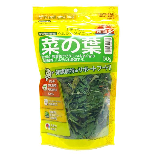 愛知県南知多産 菜の葉