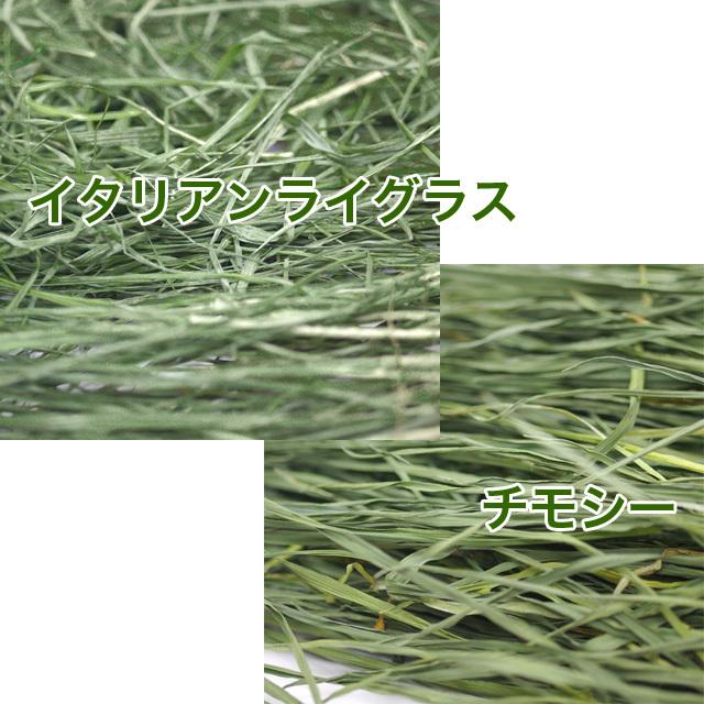 究極の乾燥生牧草 ミックス 40g