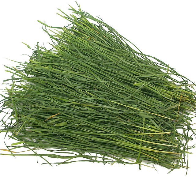 究極の乾燥牧草 チモシー 40g