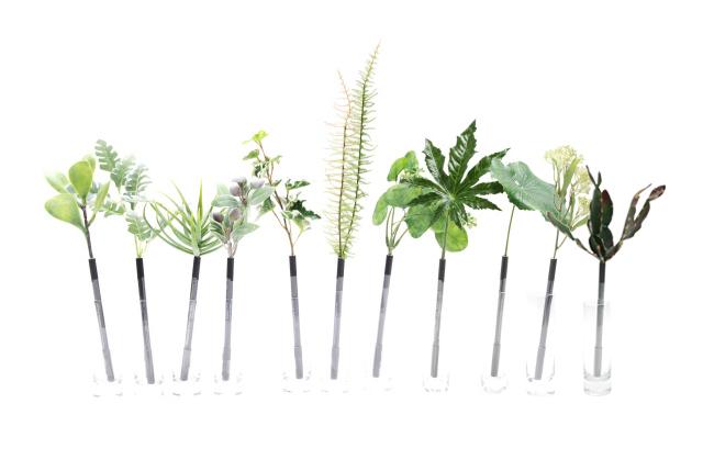 bonboog Botanical Pen(ボタニカルペン)草シリーズ