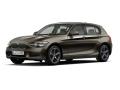 PARAGON/パラゴン BMW 1シリーズ F20 スパークリングブロンズ LHD