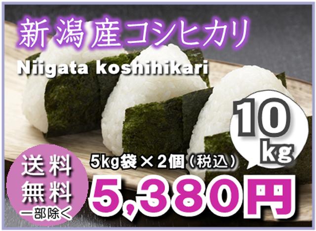 【送料無料】新潟産こしひかり5kg×2