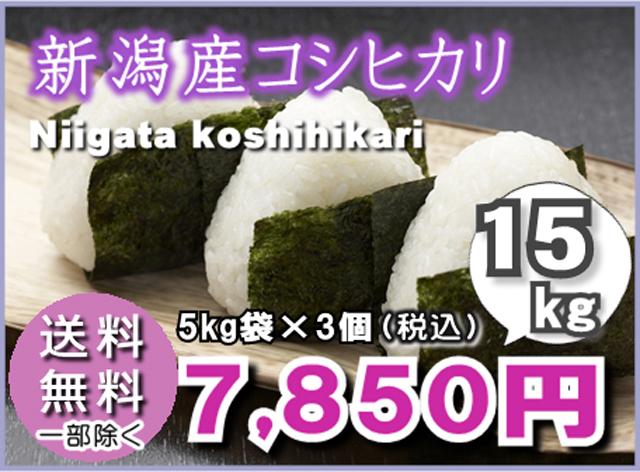 【送料無料】新潟産こしひかり5kg×3