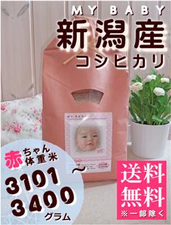 出産内祝い体重米 MY BABY新潟:3101~3400g