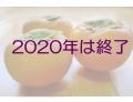 岐阜県特産富有柿