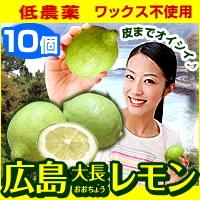 広島レモン(10個セット) 皮まで食べられる農薬をほとんど使用していないれもんです ※クール便出荷※【代引き不可】