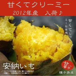 安納芋 2012年産 種子島産 5kg ふぞろい☆しっとりクリーミー、あまーい蜜芋、あんのう芋です!の画像