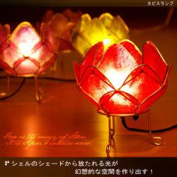 《完売》カピスロータスランプ18-bt17-2a☆シェルのシェードから放たれる光が幻想的な空間を作り出す!