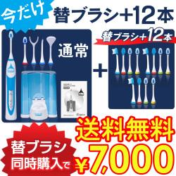 ロイヤルソニックDX+替えブラシ12本同時購入セット【送料無料】の画像