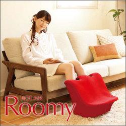 HOT AIR Roomy ホットエア ルーミィ HA-RM1845H【送料無料】の画像