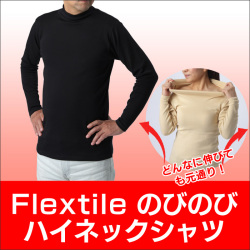 Flextile ハイネックシャツの画像