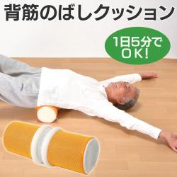 背筋のばしクッション【カタログ掲載1410】の画像