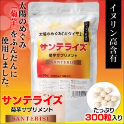 サンテライズ 菊芋 サプリメント 90g (300mg×10粒×30包)の画像