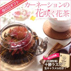 花茶「優雅セット」工芸茶5種 (花畑牧場ラスクプレゼント)の画像