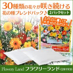 花の種ブレンドパック フラワリーランド 28193【2パックセット】の画像