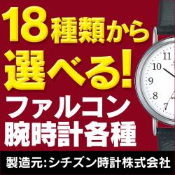 18種類から選べる ファルコン腕時計の画像