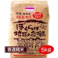 くりこま高原米 コシヒカリ(普通精米) 5kg