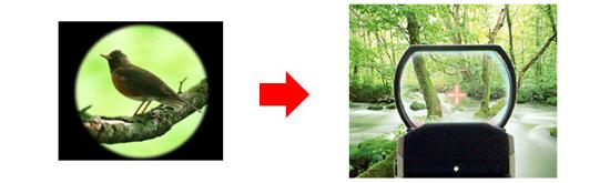 視野の狭いスコープあるいは超望遠レンズに映る野鳥と、視界が広く追尾も簡単な照準器