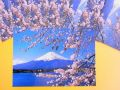 【日本のおみやげ】ポストカード【富士山と桜(河口湖畔)/写真】(バラ単品)透明OPP袋入り