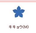 【クラフトパンチ】カーラクラフト スモールサイズクラフトパンチ(キキョウM)