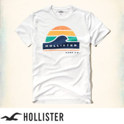 ホリスター Hollister Tシャツ:Printed Logo Graphic Tee - White
