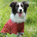 ラフィンドッグ てんとう虫バスクシャツ中型犬サイズ