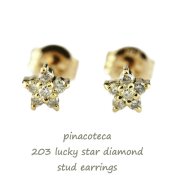 �ԥʥ��ơ��� 203 ��å��� ������ ��������� ����ԥ��� 18��,pinacoteca Lucky Star Diamond Stud Earrings K18