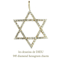��ǥå���ɥ��ǥ塼 945 ��������� �إ�������� �?�ܥ����� ���㡼�� 18��,les desseins de DIEU Diamond Hexagram Charm K18