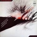 シノーポリのブルックナー/交響曲第4番「ロマンティック」 独ETERNA 2909 LP レコード