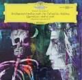アマデウス四重奏団のシューベルト/「死と乙女」ほか 独DGG 2918 LP レコード