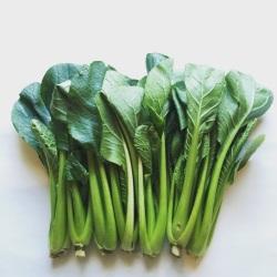 有機・無農薬栽培の小松菜