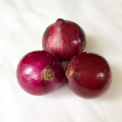 有機・無農薬栽培の赤玉ねぎ