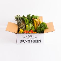 無農薬・有機野菜で作るスムージートライアルセット