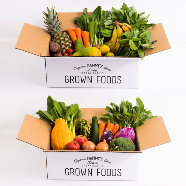 オーガニックBOXグリーンスムージーL +有機栽培野菜L(11種類)のセット