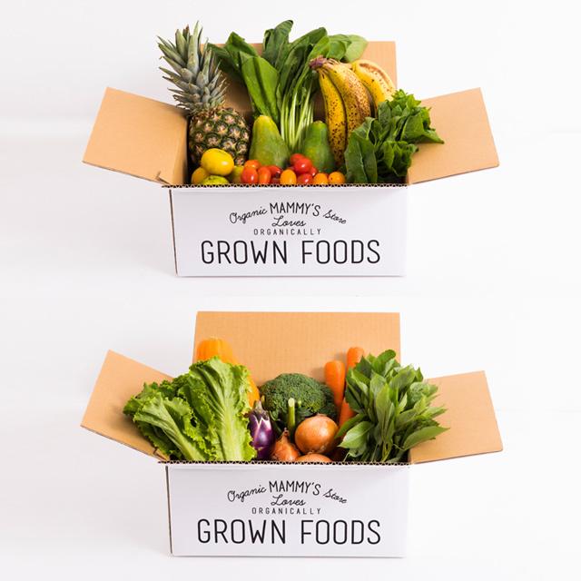 オーガニックBOXグリーンスムージーS +有機栽培野菜S(7種類)のセット