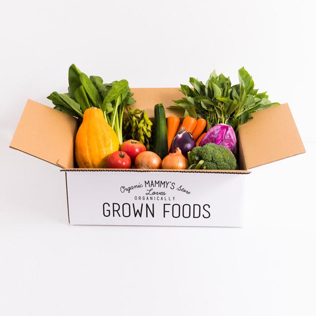 オーガニックBOX(有機・無農薬野菜)Mセット
