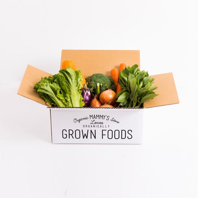 オーガニックBOX有機野菜S定期セット