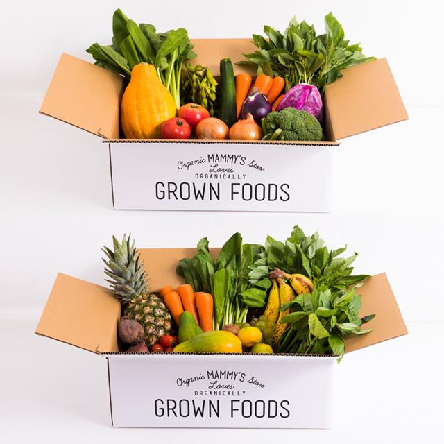 オーガニックBOX有機野菜M +オーガニックBOXグリーンスムージーL  定期セット