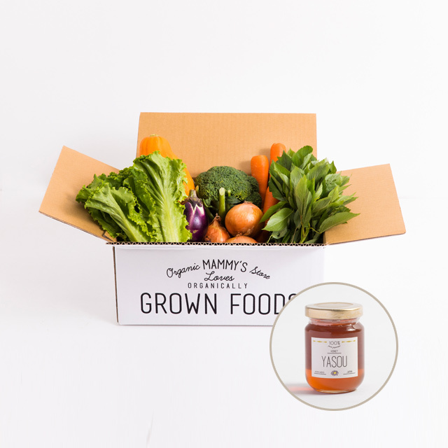 オーガニックBOX有機野菜S+ 国産純粋ハチミツ110g 定期セット