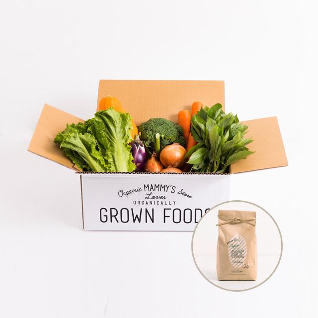 オーガニックBOX有機野菜S+ 無農薬有機栽培米2kg 定期セット